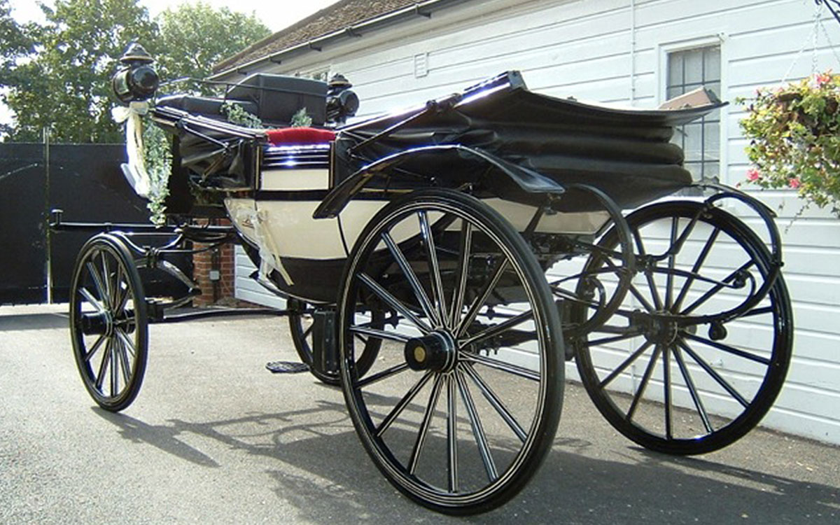 vintage horse and carriage hire essex