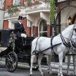 Horse drawn carriage hire