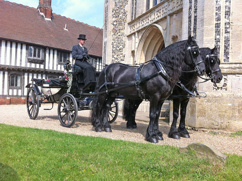 Horse and carriage wedding hire Essex
